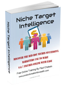 Niche Marketing e-book