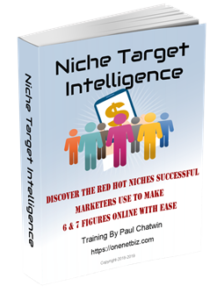 Niche Target Intelligence - E-book on niche market training